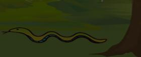 Garden Snake (Poem)